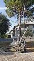 Monumento ai caduti della Grande Guerra - Trebbio 10.jpg