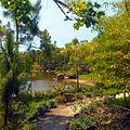 Morikami Museum and Gardens - Landscape 02.jpg