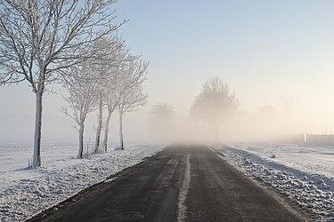 https://upload.wikimedia.org/wikipedia/commons/thumb/6/6d/Morning_fog_in_Upper_Silesia.jpg/375px-Morning_fog_in_Upper_Silesia.jpg