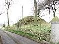 Motte, Drumard - geograph.org.uk - 1167872.jpg