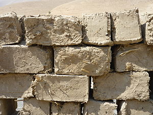 Mudbrick - New, unlaid mudbricks in the Jordan Valley, West Bank (2011)