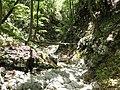 Mudna dol - panoramio (10).jpg