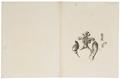 Murida - ingewanden - 1700-1880 - Print - Iconographia Zoologica - Special Collections University of Amsterdam - UBA01 IZ20500029.tif