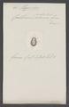 Murmidius - Print - Iconographia Zoologica - Special Collections University of Amsterdam - UBAINV0274 017 03 0036.tif