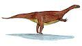Mussaurus2.jpg
