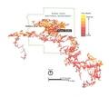 NPS jewel-cave-layout-map.pdf