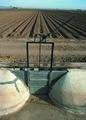 NRCSAZ02074 - Arizona (431)(NRCS Photo Gallery).tif