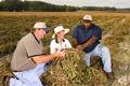 NRCSFL07009 - Florida (715593)(NRCS Photo Gallery).tif