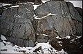 NW DuToit Mtns asymmetric xenoliths in quartz tonalite.jpg