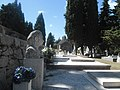 Na jadranskom otoku Braču groblje.jpg