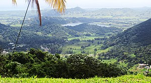 Naguabo - Rio Blanco offstream reservoir IMG 1682.jpg