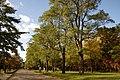 Nakajima Park Sapporo18n3200.jpg