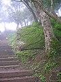 Nandi stair.jpg