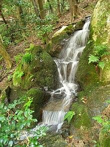 o elemento água no jardim japonês