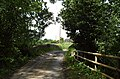 Narrow Bridge - geograph.org.uk - 855395.jpg