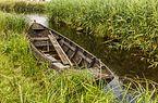 Nationaal Park Weerribben-Wieden. Wandeling over het Laarzenpad door veenmoeras van De Wieden 02.jpg