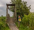 Nationaal Park Weerribben-Wieden. Wandeling over het Laarzenpad door veenmoeras van De Wieden 04.jpg