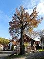Naturdenkmal Linde in Vierbach.jpg