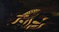 Natureza morta; peixes, crustáceos e objectos 2 - Joaquim Manuel da Rocha.png