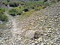 Navidhand Valley, Khyber Pakhtunkhwa , Pakistan - panoramio (48).jpg