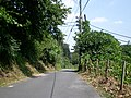 Near Futatsudzuka Pass 1 - panoramio.jpg