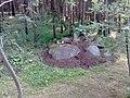 Nevyanskiy r-n, Sverdlovskaya oblast', Russia - panoramio (47).jpg