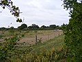 New fencing in a field in Reepham Road - geograph.org.uk - 1522937.jpg