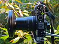 Nikon COOLPIX P7000 + UR-E22 + (Joint working) Step down ring 52mm-46mm + FC-E9 Fisheye lens (2).jpg