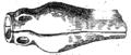 Noções elementares de archeologia fig016.png