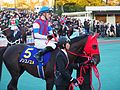 Nonkono Yume and Christophe Lemaire in Tokyo Daishoten Day at Oi racecourse (31149191974).jpg