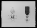 Nordstjärneorden riddarkors miniatyr - Livrustkammaren - 27913.tif