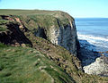 North Cliff - geograph.org.uk - 1226672.jpg