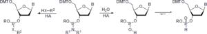 Nucleoside phosphoramidite - X = O, S, NH.