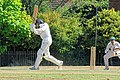 Nuthurst CC v. Henfield CC at Mannings Heath, West Sussex, England 048.jpg
