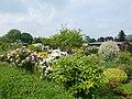 Oberhausen – Rechenacker - Kleingartenanlage am 1. Mai 2014 – - panoramio (4).jpg