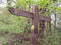 Offa's Dyke Fingerpost in King's Wood - geograph.org.uk - 169211.jpg