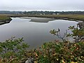 Ogunuit River and marshland IMG 2242 FRD.jpg