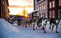 Ola Brennodden Sunde (8435500111).jpg