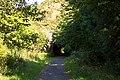 Old railway tunnels in the Slade Valley, Devon - geograph.org.uk - 42683.jpg