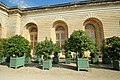 Orangerie du château de Versailles le 11 septembre 2015 - 64.jpg