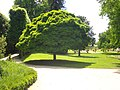 Orléans - jardin des plantes (02).jpg