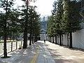Osaka Dome - panoramio.jpg