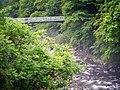 Osakacho Yuya, Gero, Gifu Prefecture 509-3113, Japan - panoramio (1).jpg