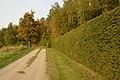 Otepää - wmee-086.jpg