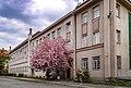 P1360389 вул. Довженка, 3 Колишній будинок чеського поліційного управління.jpg