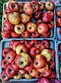 Pakistan apples.jpg