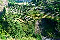 Pakistan is amazing - Agricultural terraces in Pakistan.jpg