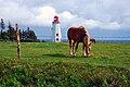 Panmure island lighthouse.JPG