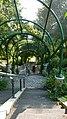 Parc de Belleville (stairs).jpg