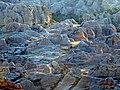 Parc de l'Isalo, Madagascar (25467979924).jpg